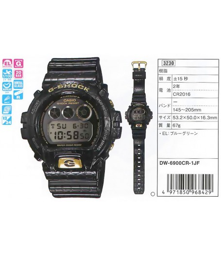 CASIO DW-6900CR-1E